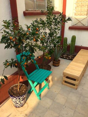 Casa Alacrán, a local place to love - Ciudad de México - Appartement