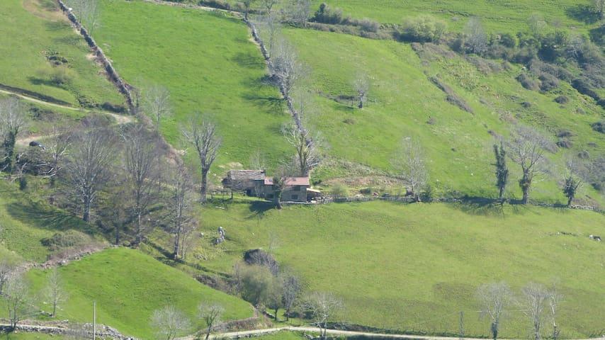 Cottage Chulavista