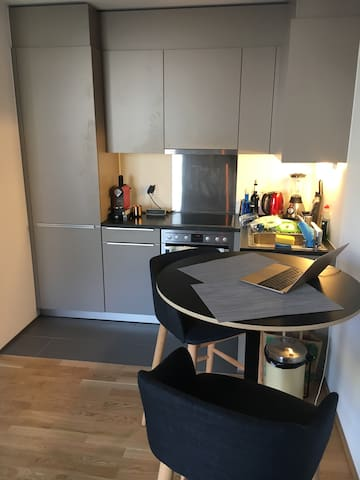 Modern fully equipped kitchen with blender, kettle, nespresso machine, large fridge, and all the usual kitchen utensils (no dishwasher)
