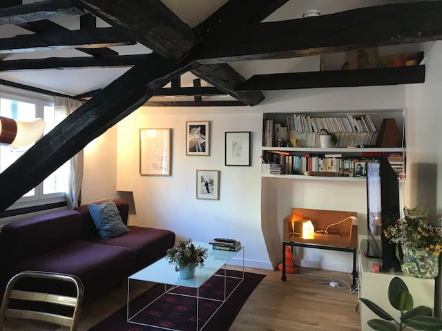 Beautiful appartement near Pigalle
