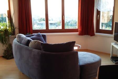 Gemütliche Wohnung mit Blick über den Bodensee. - Rorschacherberg