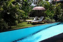 A beautiful sparkling pool and water feature