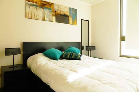 NICE APART METRO MONEDA  2 to 3 GUESTS Floor 15th - Santiago - Apartment