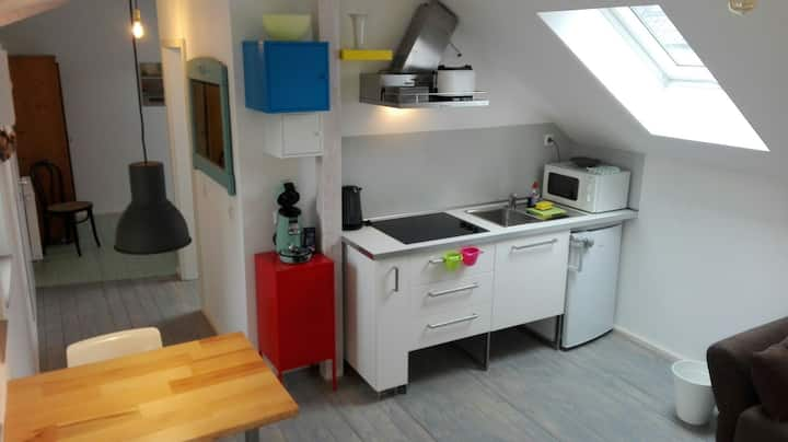 Traumhafte Wohnung in Poppelsdorf mit Dachterrasse