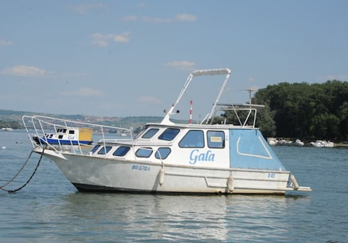 River Boat daily charter - Belgrade - Bateau
