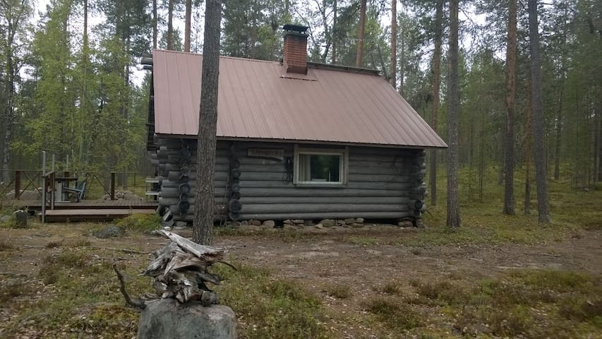 Cottage, pinewood forest.