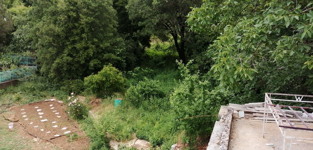 House with garden in Aley in the middle of nature