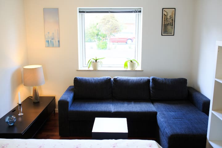 Roomy in Odense - Odense, Marslev - House