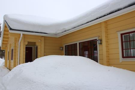 Finland, Lapland, Salla, Sallatunturi, PAN Village