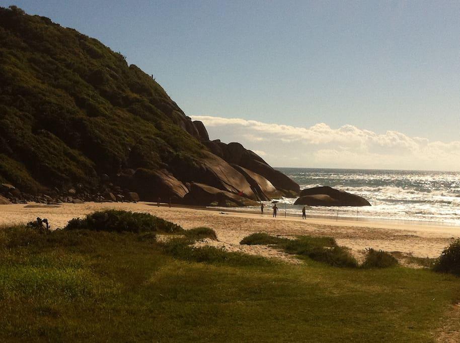 North most part of the beach! - Norte da praia