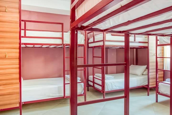 Selina Baños - Bed in Large Dorm