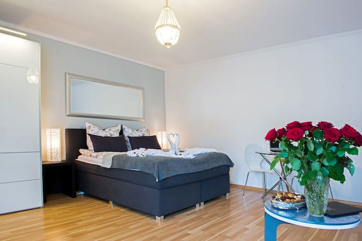 Luxury studio near Frankfurt - Rüsselsheim - 公寓