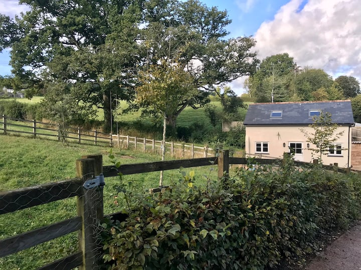 Characterful, Cosy Dartmoor Cottage
