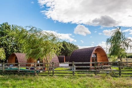 Family Camping Pod (4 people) - Richmond