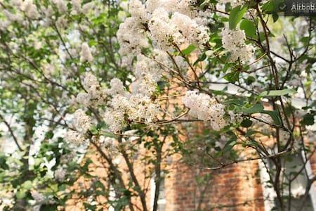 Berkley Flowers Entire Home - Berkley - Talo