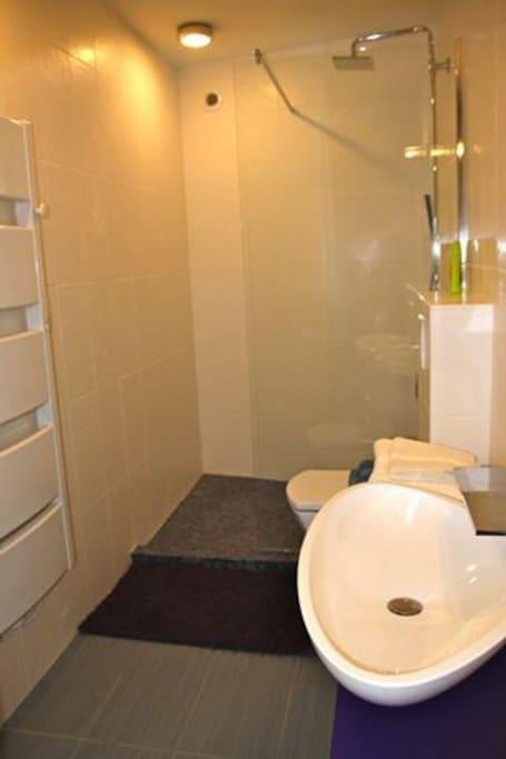 La deuxième salle de bains moderne et tout confort