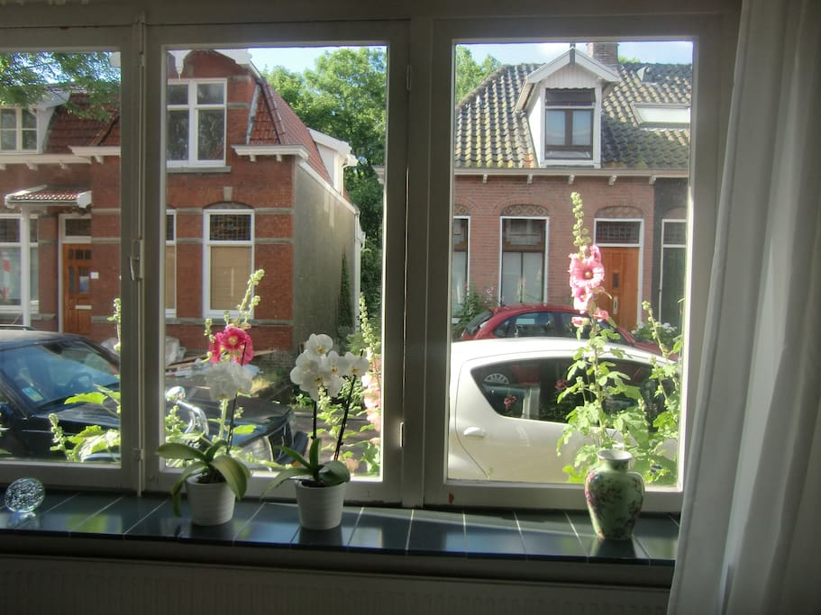 Surrounded by beautiful traditional Dutch houses.