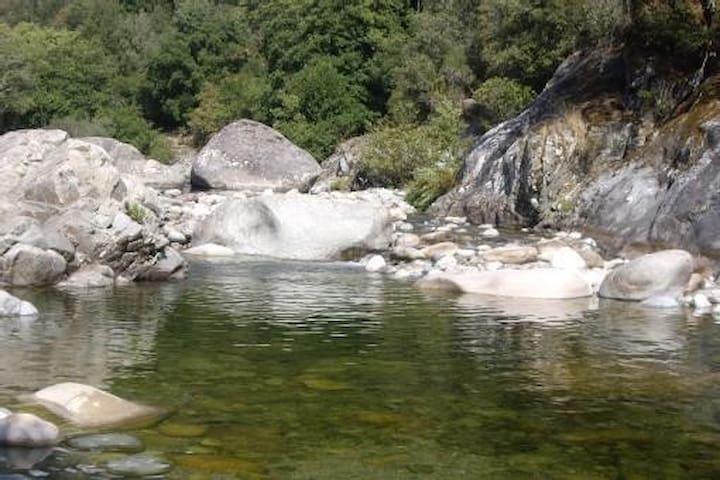 Vue de la rivière située à 1 km