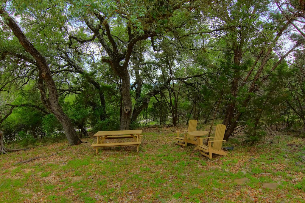 Bench,Chair,Furniture,Tree,Forest