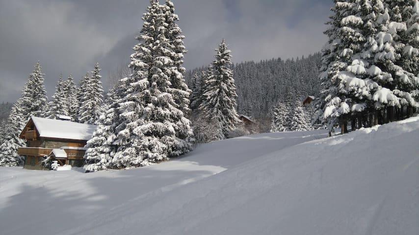 Ski au pied, emplacement idéal, au cœur du domaine