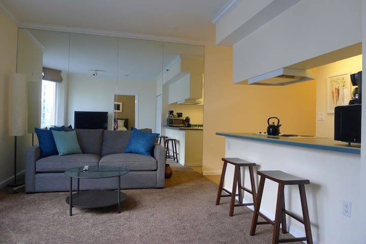 Furnished Monthly Condo Rental
