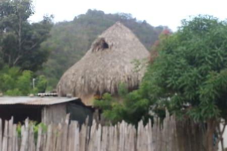 Anugwe Duna, Paz, tranquilidad y armonía-Palomino - Palomino - Chambres d'hôtes