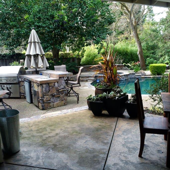 Outdoor kitchen (BBQ, sink, fridge)