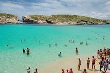 Blue Lagoon  near Comino / Gozo