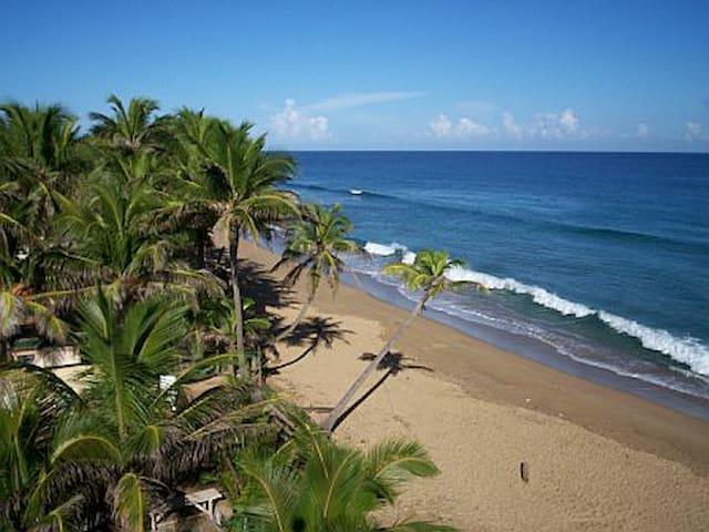 Nearby Sandy Beach