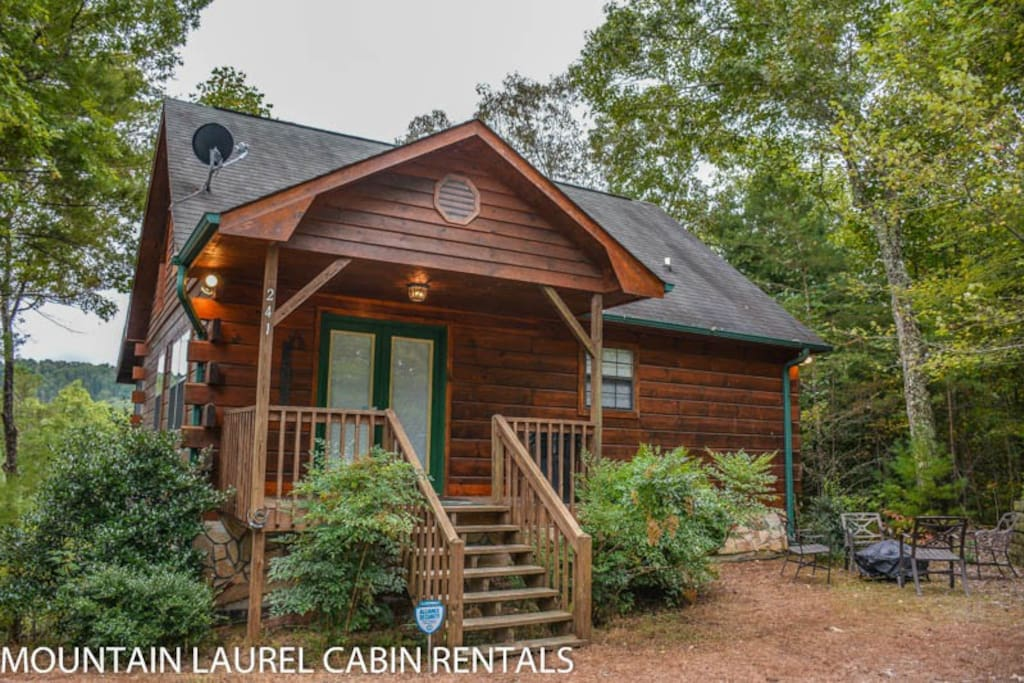 Mlc bucky s mountain vista cabins for rent in blue ridge for 8 bedroom cabins in blue ridge ga
