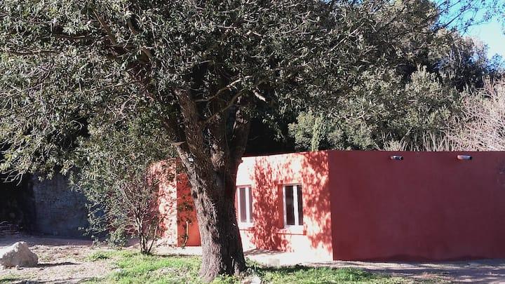 4 KM  St Florent villa 8 Pers. calme grand terrain