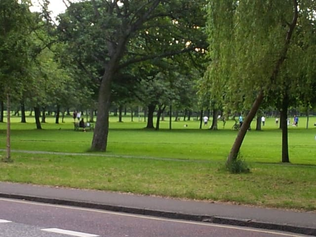isn't this just so green ! This is the park , a huge space known as the Meadows just outside your window