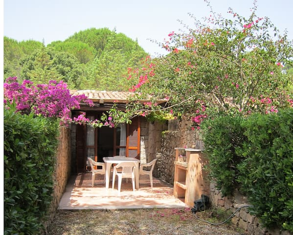One bedroom maisonette NSV - Santa Teresa Gallura - Byt