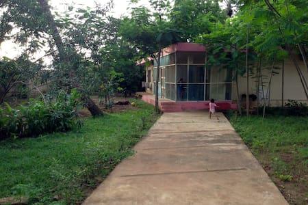 Maison et jardin centre-ville - Porto Novo - 独立屋
