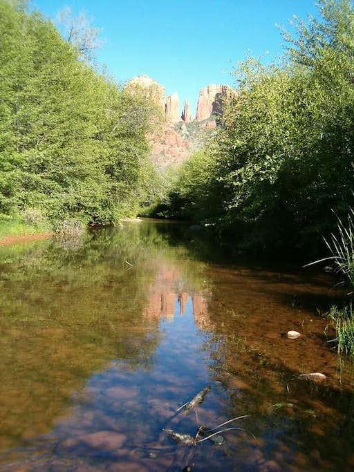 The famous Oak Creek, which has flown through the Red Rocks by the time it reaches us, here. Enjoy a cool, summer swim.