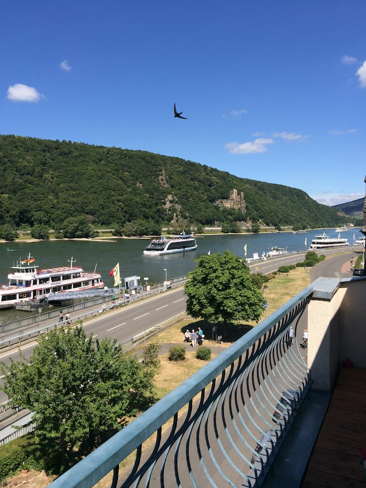 Spectacular 3 Bedroom Apartment on the Rhine