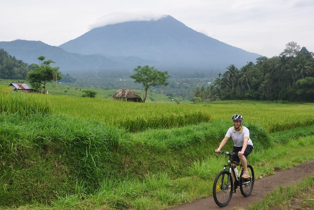 We organize biking tours with different levels of difficulty. Up to you!