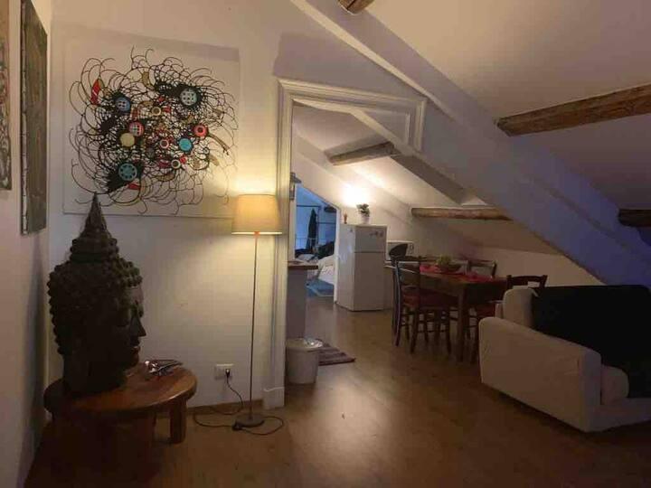 La casa dell'artista Chisesi