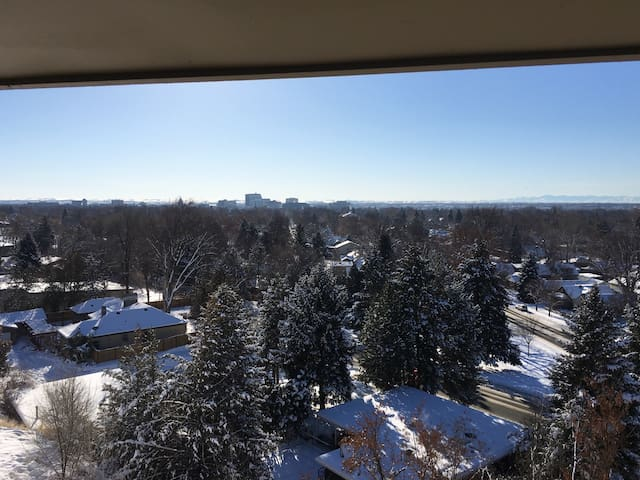 AMAZING CITY VIEWS! FROM THIS 1 BEDROOM W/LOFT APT - Boise - Pis