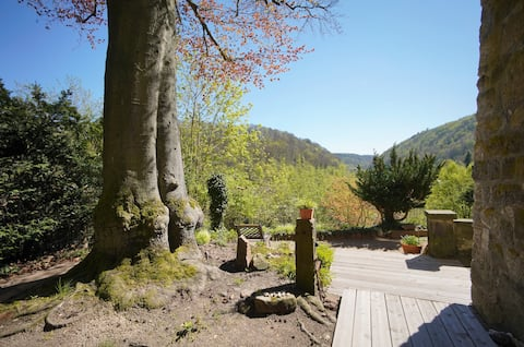 Tharandt - вид на долину и лесные ванны