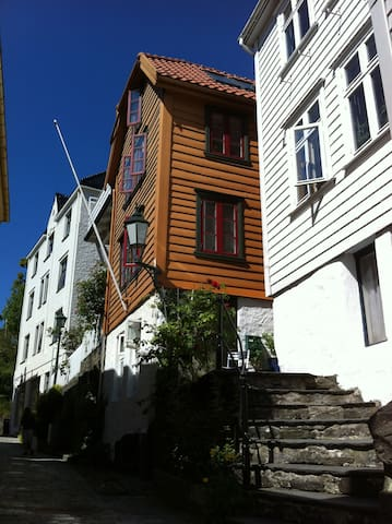 A very central and nice small flat - Bergen - Wohnung