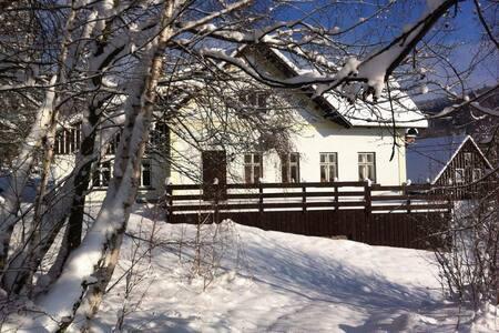 Cottage in Krkonose mountains - Zlatá Olešnice - Chatka w górach