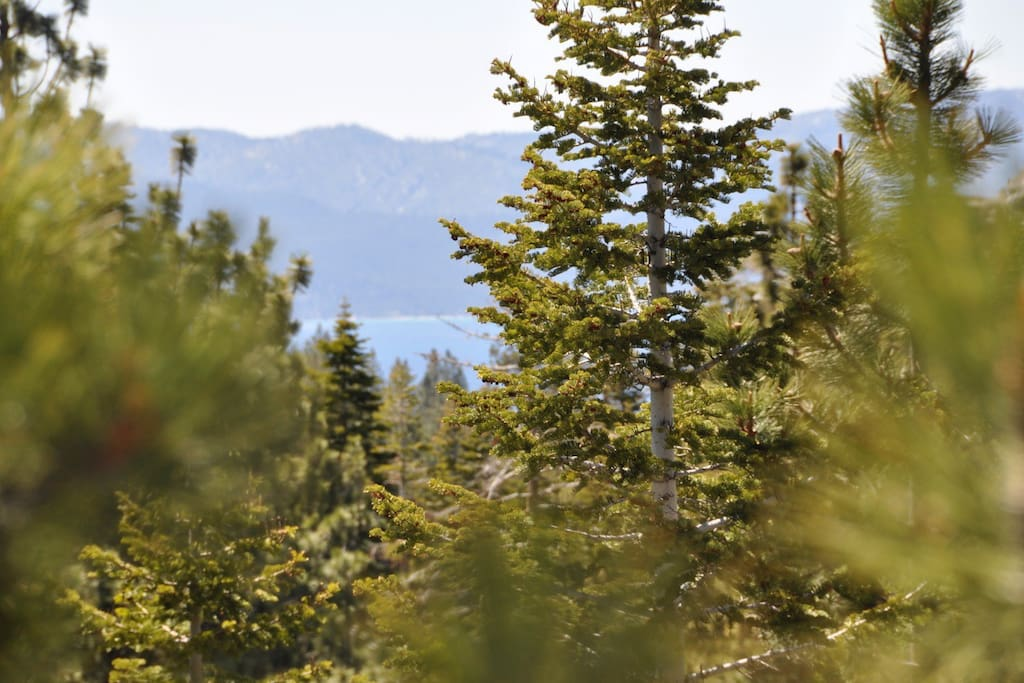 Lake Tahoe view from the patio