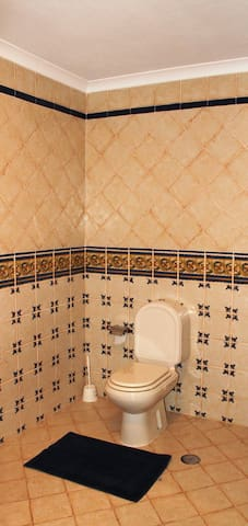 Typical Portuguese tiles in the bathroom