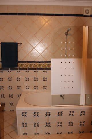 Bath tub with shower