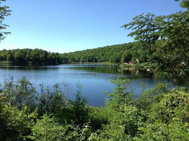 Petit paradis au bord du lac - Saint-Damien - Chalet