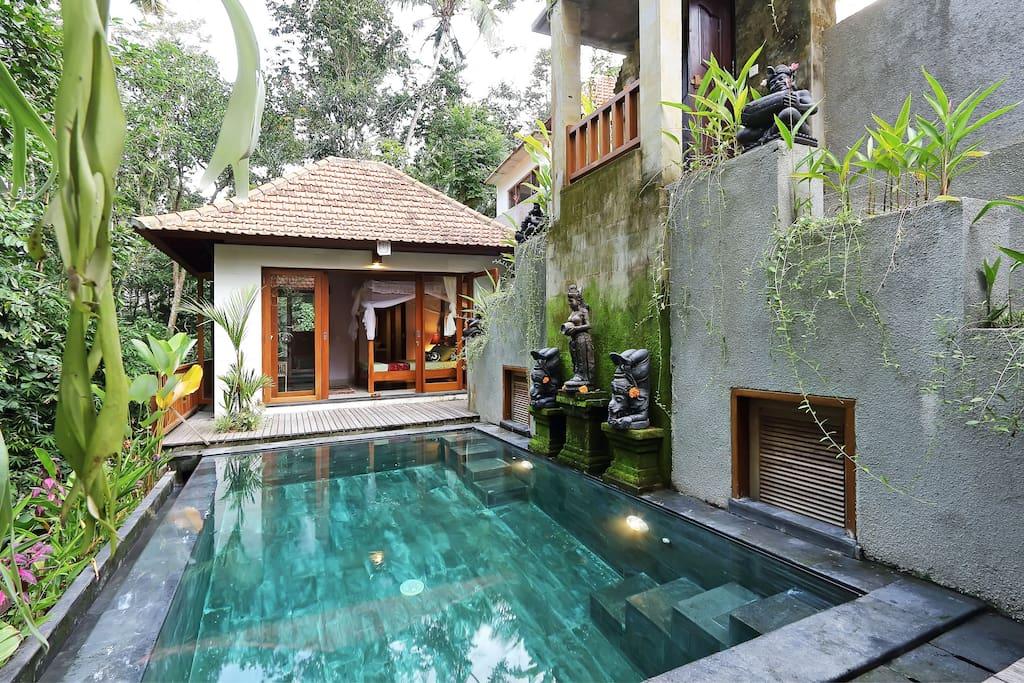 Villa 1 chambre coucher piscine rizi res jungle for Chambre a coucher entiere