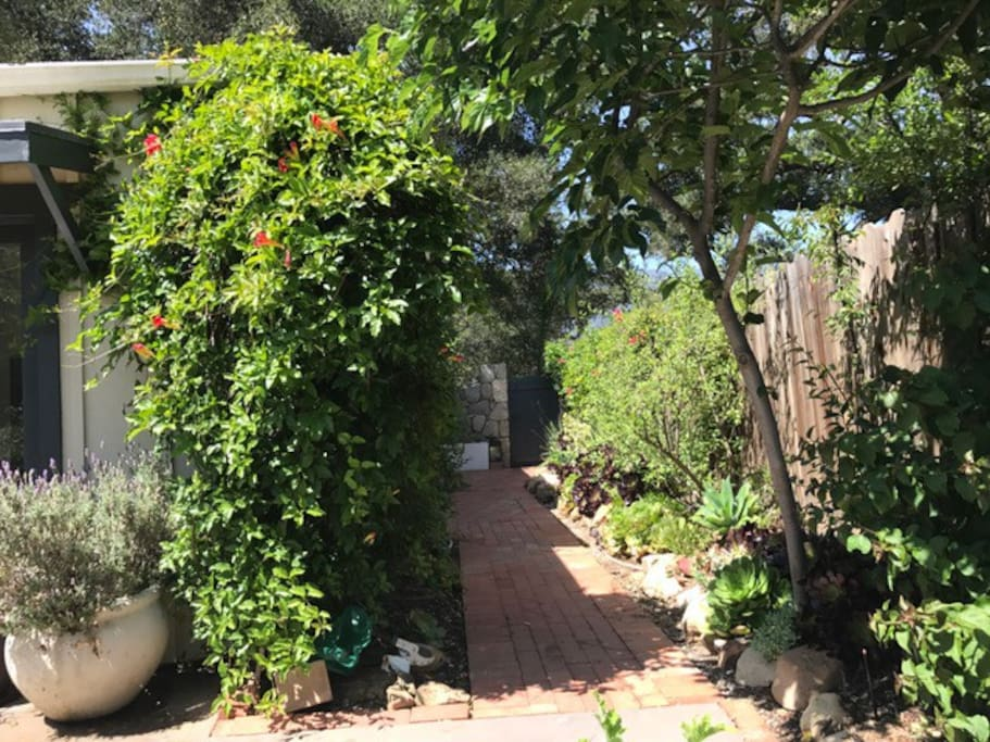 View of walkway from back yard.