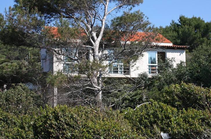 Apartamenty typu studio przy plaży Zatoka Saplunara (Mljet) (AS-402-a)