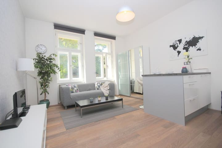 Cosy apartment near center and park